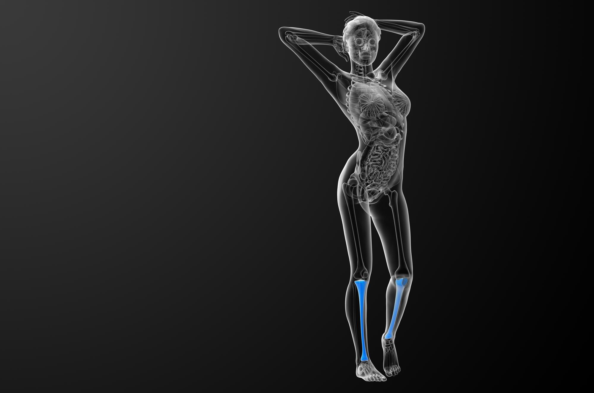 コラーゲンは骨にとって大切な存在